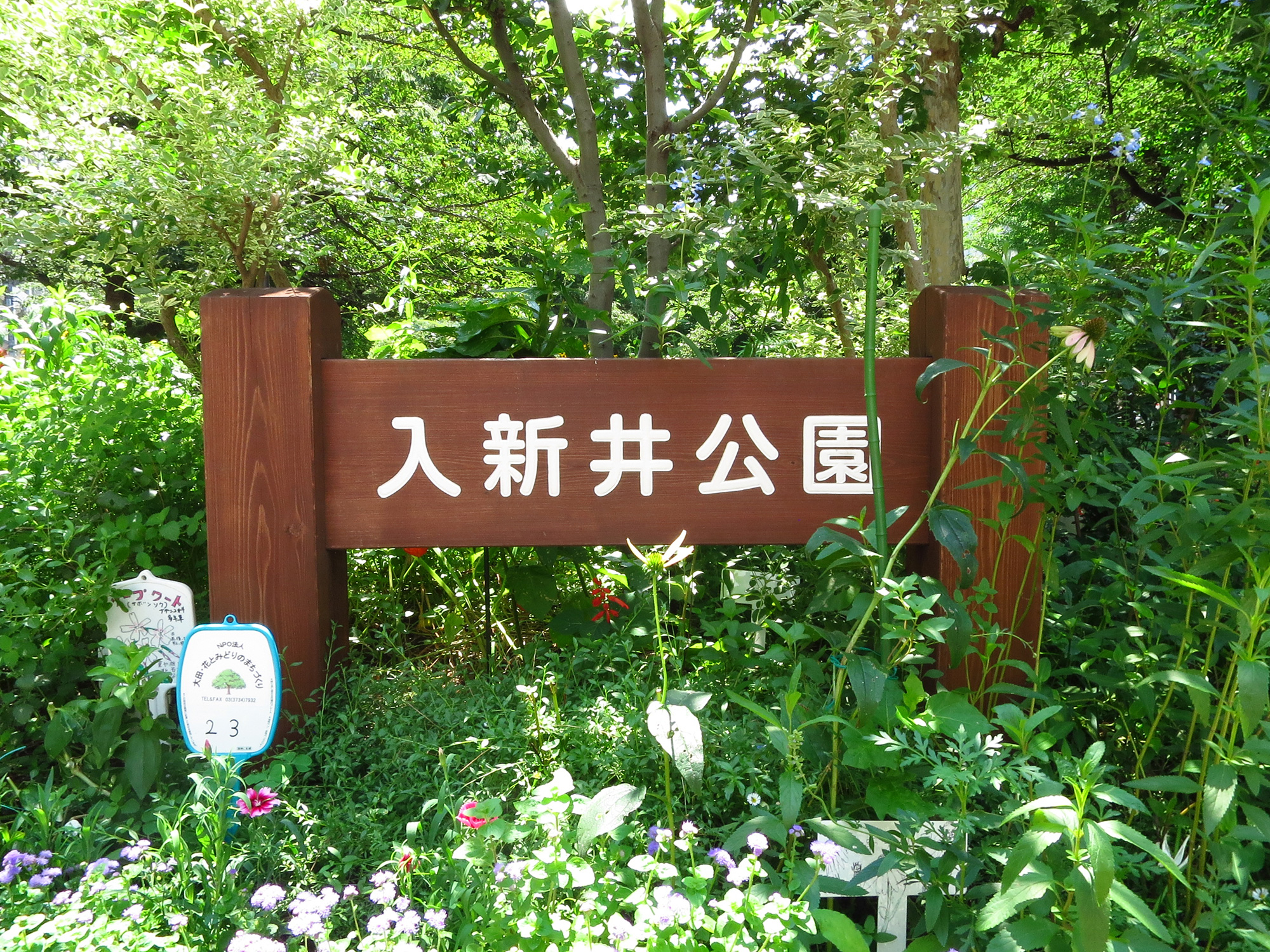 周辺環境(入新井公園)